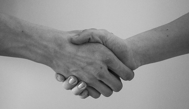 professional handshake networking