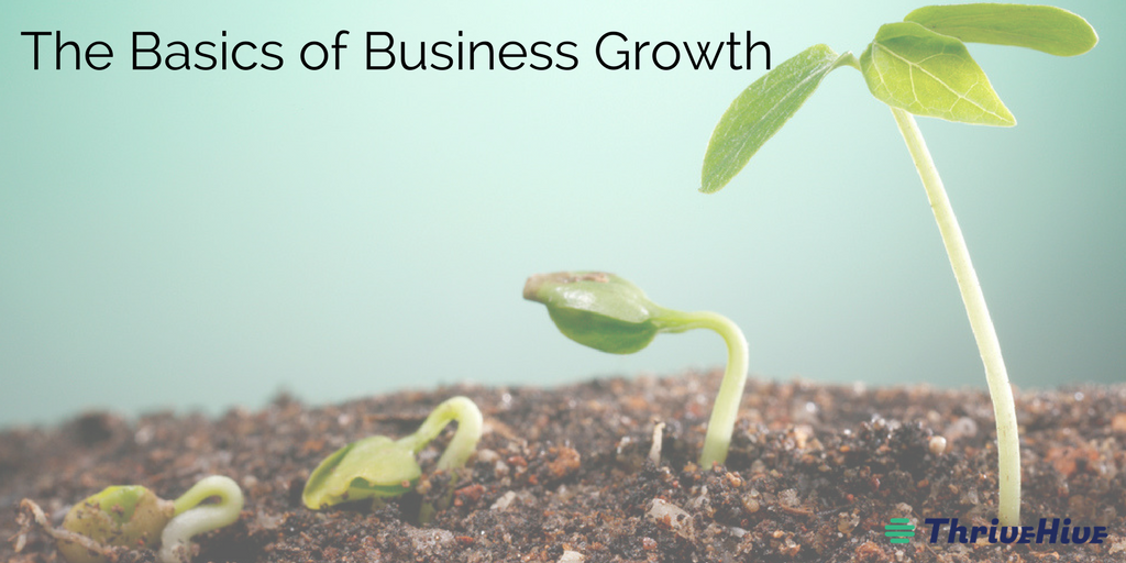 The Basics of Business Growth