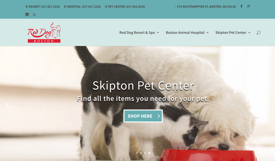 website CTA example shop here pet store online Red Dog Boston
