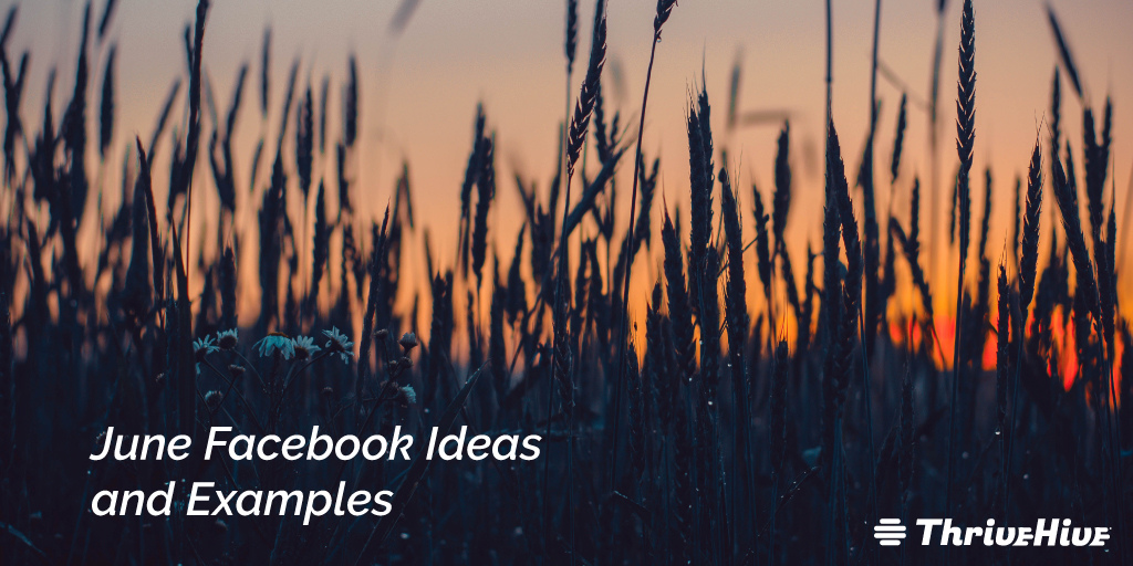 June Facebook Ideas and Examples