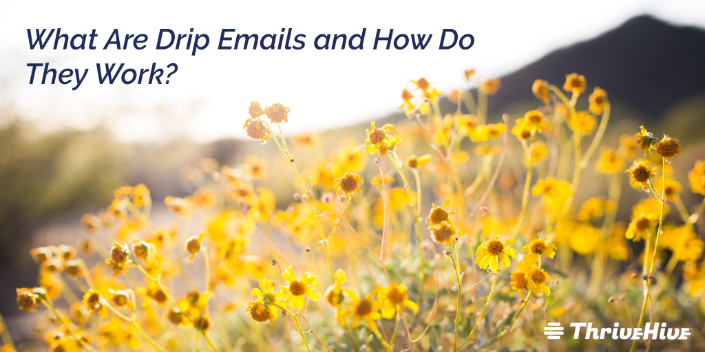 What Are Drip Emails and How Do They Work?