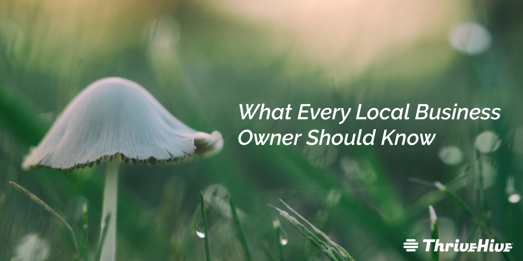 10 Things Every Local Business Owner Should Know